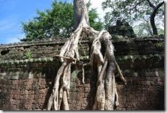 Weltreise 2013 - Kambodscha 052