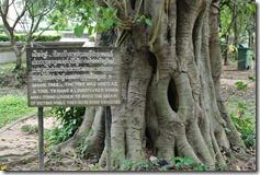 Weltreise 2013 - Kambodscha 025