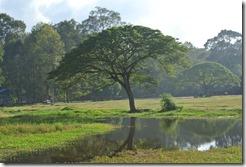 Weltreise 2013 - Kambodscha 106