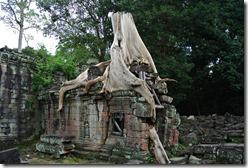 Weltreise 2013 - Kambodscha 125
